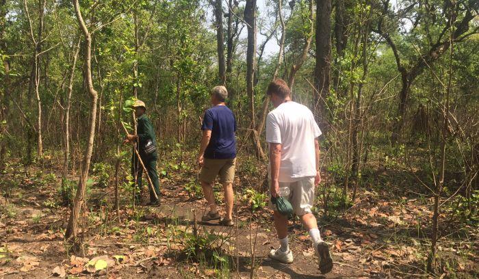 Jungle safari- Jungle walking tour