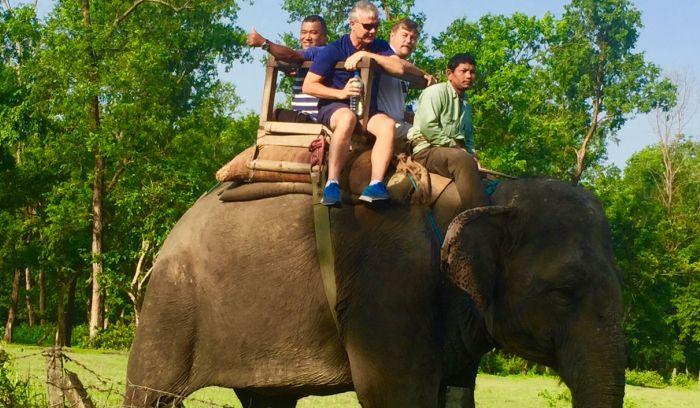 Elephant Jungle safari
