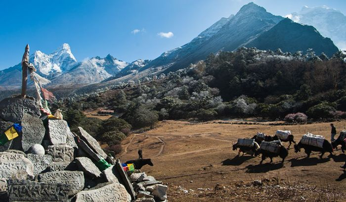 View from tengboche( 3860m),walking a head to Everest base camp
