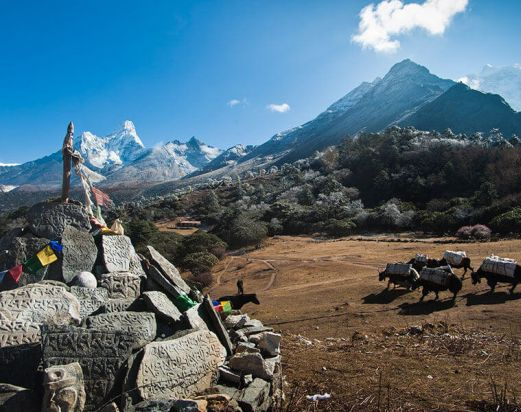 Annapurna Everest Comfort Trek