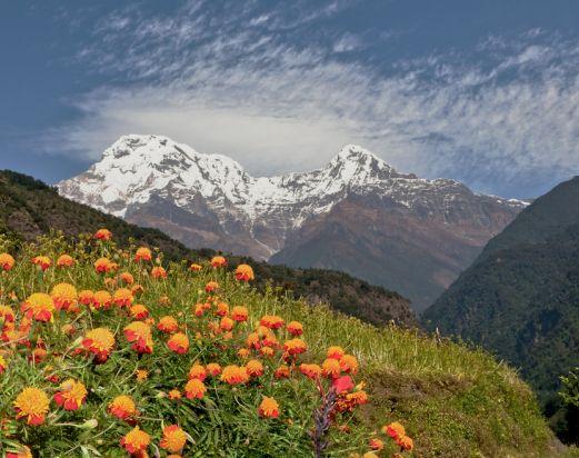 Luxury Annapurna View trek, luxury annapurna lodge trek, Annapurna region Trekking